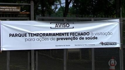 Governo de SP fecha dois parques após morte de macaco por febre amarela