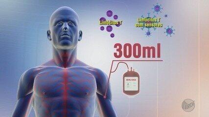 Novo tratamento de combate à leucemia pode ser a esperança para milhares de brasileiros