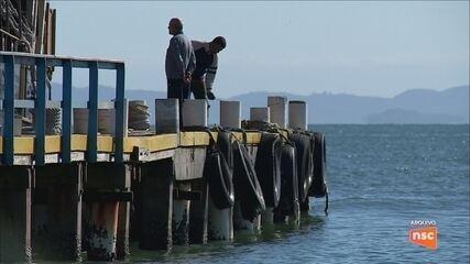 Estudo aponta que Florianópolis têm condições de receber navios de turismo