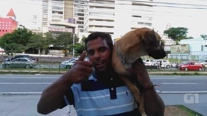Morador de rua reencontra cão equilibrista em Sorocaba: 'Agora é só alegria'