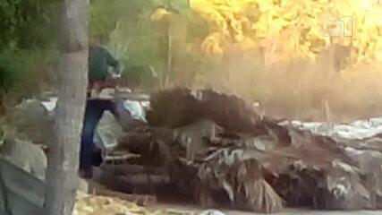 Homens derrubam barracos com motosserra em assentamento no norte do Tocantins