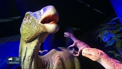 Um Programão com muitos dinossauros