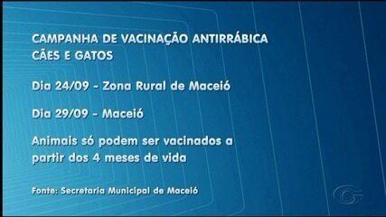 Vacinação contra a raiva começa nesta segunda-feira (24) na zona rural de Maceió