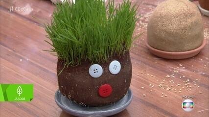 Aprenda a fazer jardim de plantas divertidas com seu filho