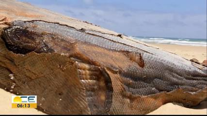 Caixas misteriosas são encontradas em praia de fortaleza