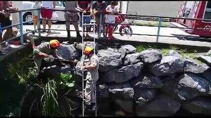 Cachorro fica preso entre pedras de córrego e morador regisra momento do resgate