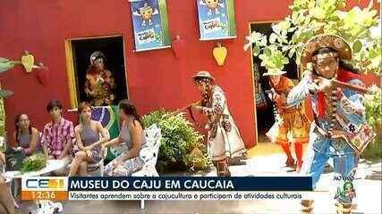 Visita ao Museu do Caju em Caucaia