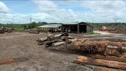 Justiça aceita denúncia do MPF contra envolvidos em transporte ilegal de madeira no MA