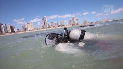 Pesquisadores fizeram mergulho na região antes da obra a fim de observar possíveis impactos à fauna e à flora da região.