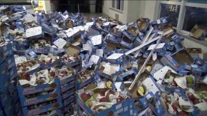 PF apreende mais de uma tonelada de cocaína dentro de carga de mangas em Natal (RN)