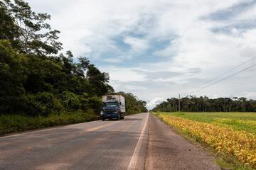 Projetos de infraestrutura são criados para exportar a soja na Amazônia