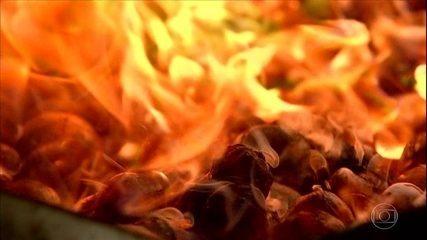 Torra da castanha de caju exige cuidados do produtor