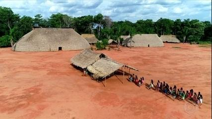 Conheça as Yarang, indígenas que coletam sementes para reflorestar fazendas no Xingu