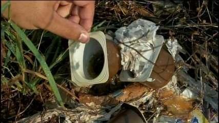 Aumenta o número de casos de dengue em Fartura