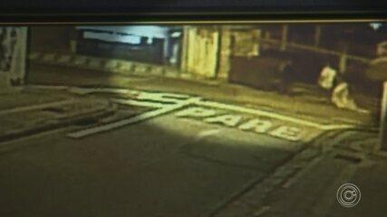 Vídeo mostra chineses jogando cachorro dentro de lixo em Sorocaba