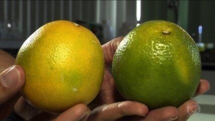 Pesquisadores brasileiros usam a cera da carnaúba para aumentar a duração da frutas