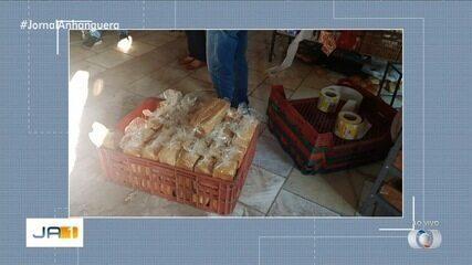 Operação fecha fábrica de pães que tinha ratos e baratas nos alimentos, em Goiânia