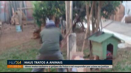 Idoso suspeito de matar cachorro com golpes de foice deixa a cadeia em Ponta Grossa