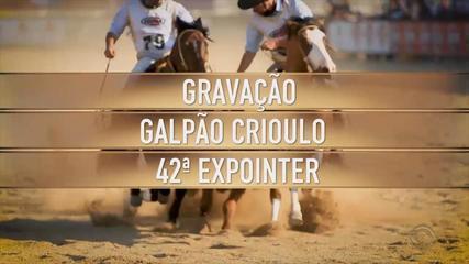 Confira as atrações do Galpão Crioulo na Expointer