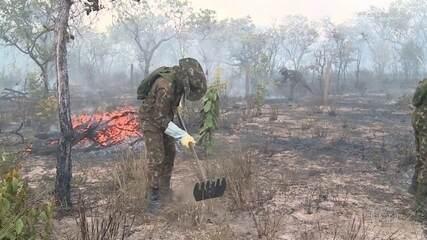 Áreas de proteção ambiental em Goiás e no Pará são atingidas por incêndios