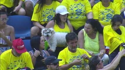 Cachorro acompanha final masculina da etapa de Vila Velha do Circuito Brasileiro de vôlei de praia