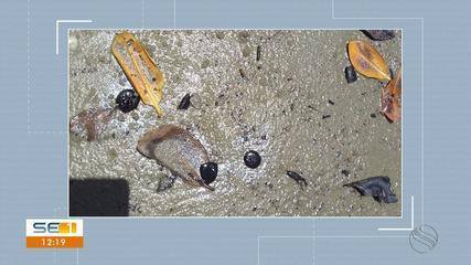 Manchas são registradas em área de mangue de Santa Luzia do Itanhy