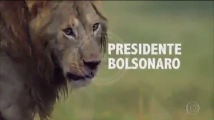 Bolsonaro pede desculpas por vídeo publicado na conta dele nas redes sociais