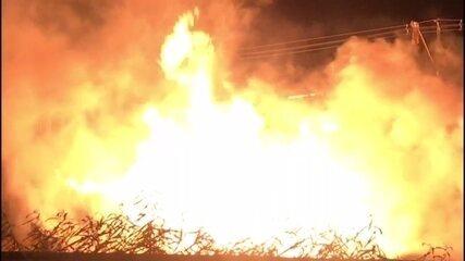 Incêndio atinge madeireira no Cabo de Santo Agostinho