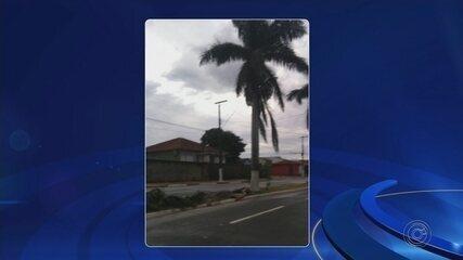 Chuva forte alaga ruas e derruba árvores na região de Itapetininga
