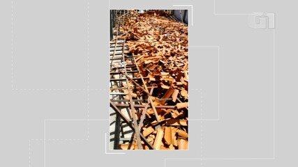 VÍDEO: Telhado de escola desaba em Salinas da Margarida