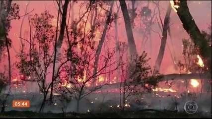 Austrália registra mais de 100 incêndios em diferentes regiões do país