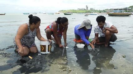 Marisqueiras de Plataforma falam de tradição, que gera renda há décadas