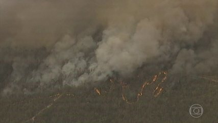 Incêndios florestais na Austrália seguem fora de controle