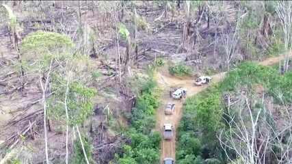 Na Amazônia, projetos de conservação das florestas estão parados