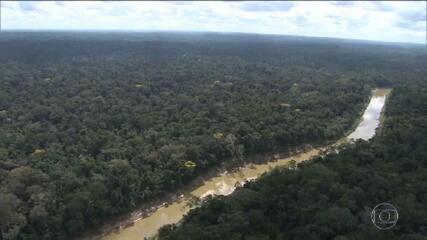 MP pede esclarecimento ao BNDES sobre repasses do Fundo Amazônia