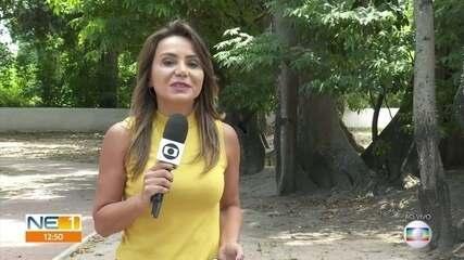 Governo de Pernambuco faz seleção para 670 profissionais de saúde