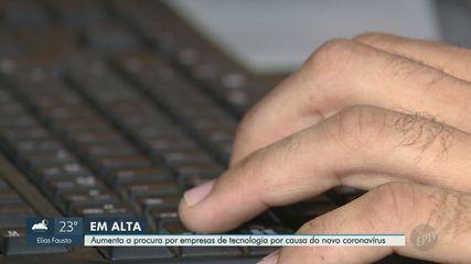 Empresas de tecnologia da região de Campinas registram alta demanda em meio à pandemia
