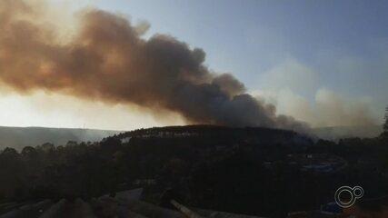 Incêndio invade plantação de eucalipto em Mairinque