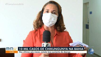 Número de casos de Chikungunya cresce nos últimos seis meses na Bahia