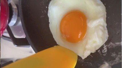 Culinária #013: Aprenda a fazer ovo frito, cozido, poché, mollet e mexido cremoso