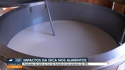 Produção de leite no Sul do Estado já tem prejuízo de 30% por causa da seca