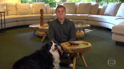 Ziggy, cachorro de Luciano, invade gravação do 'Caldeirão'