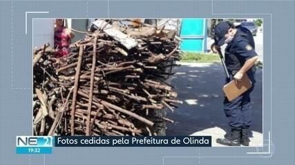 Guarda Municipal de Olinda recolhe o equivalente a dois caminhões de lenha para fogueira