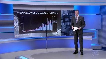 Retrato da Covid-19: JN analisa os dados sobre a pandemia no Brasil