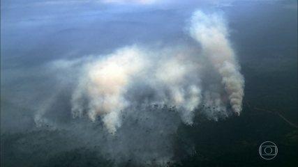 Governo precisa de mais rigor na fiscalização das queimadas