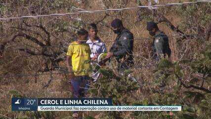 Relembre reportagem de julho de 2020 sobre combate ao uso do cerol e da linha chilena