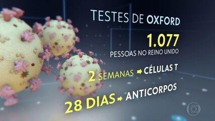 Vacinas contra o coronavírus apresentam resultados promissores em testes preliminares