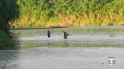 Pandemia da Covid-19 ameaça índios isolados na Amazônia