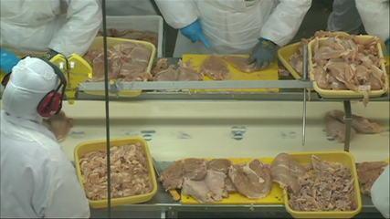 Filipinas suspendem importações de frango do Brasil