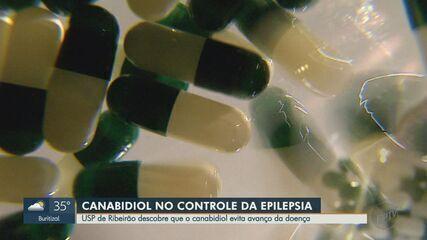 Canabidiol tem potencial de evitar progressão da epilepsia, aponta estudo da USP